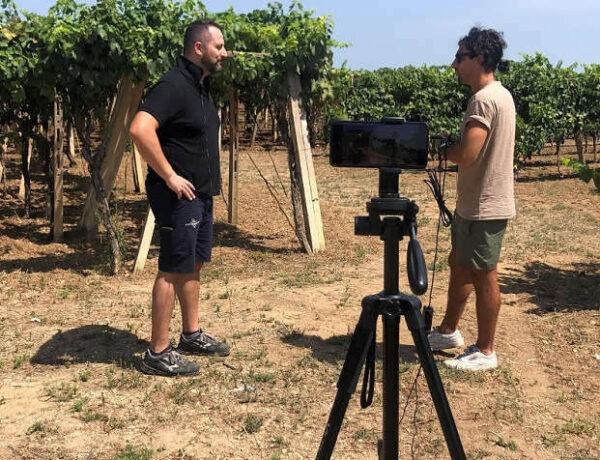 Azienda vitivinicola Marulli | Il Gusto Relativo
